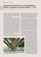 Arborikulturni postupci pri konzervaciji starih i posebno vrijednih stabala II dio