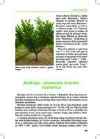 prikaz prve stranice dokumenta Brekinja - plemenita šumska voćkarica